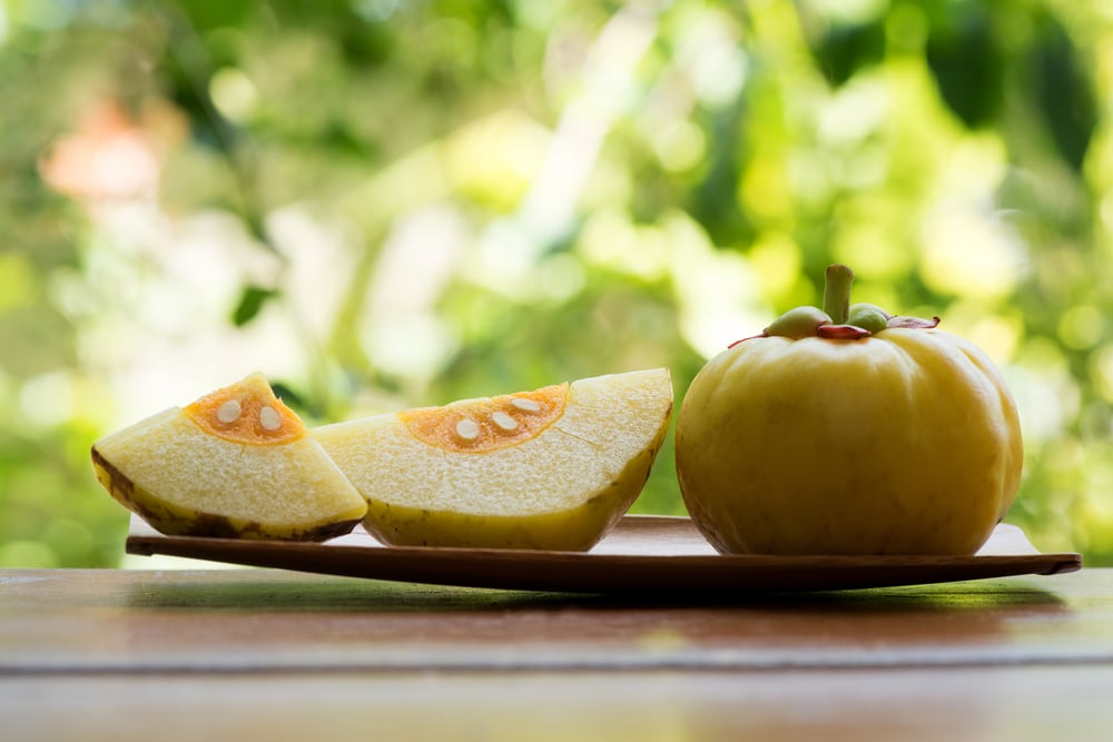 How Garcinia Cambogia Can Help You Lose Weight Weight Loss